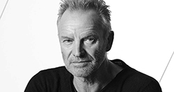 Sting - Irish music artist