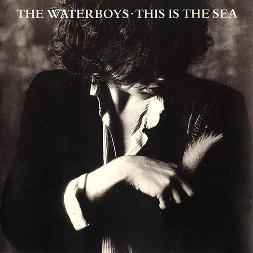 The Whole Of The Moon -  - The Waterboys
